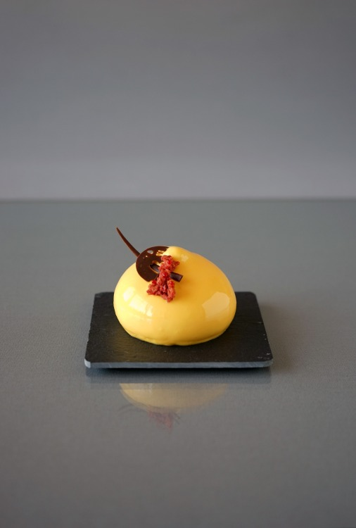 Mango-Himbeere Petit Gâteaux