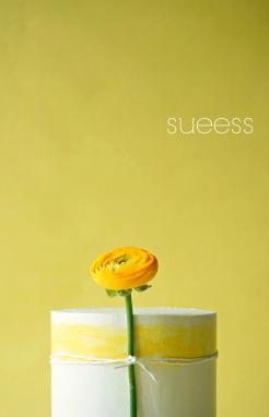 sueesscd5